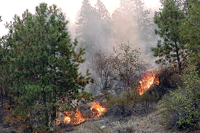 A picture of a 2015 wildfire.