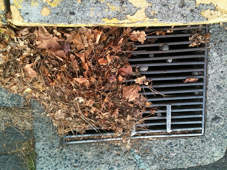 LEAVES collecting at drains need to be cleared away by property owners to help prevent flooding.