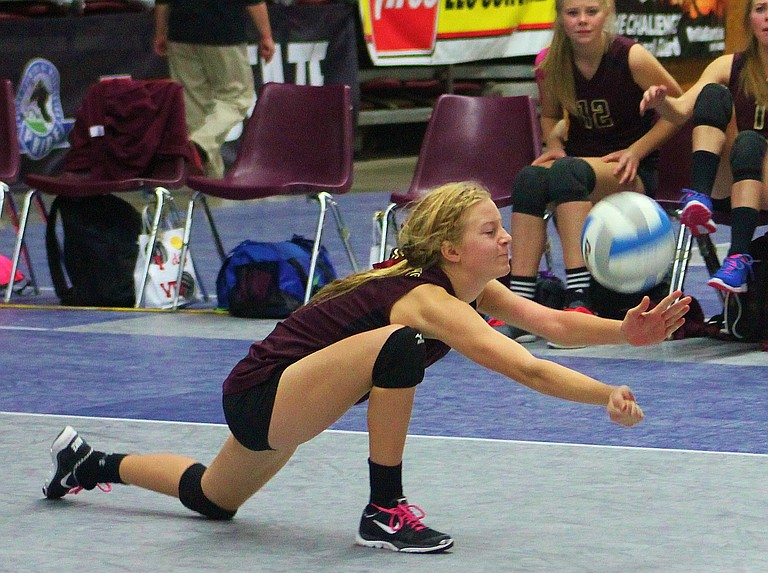 Freshman Krista den Hoed digs deep against Oakesdale in tonight's state 1B volleyball quarterfinals in the SunDome in Yakima.