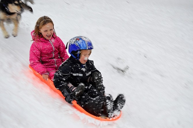 Aili Archibald, 6, and Ivar Van Rutledge, 5, coast down the hill Thursday at Jackson Park, always a popular sledding and tubing spot when snow falls. Indy runs along to make sure they're okay.