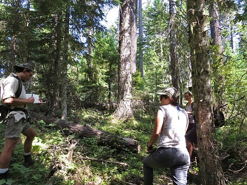 BARK VOLUNTEERS work on a community mapping project in the Mount Hood National Forest. The U.S. Forest Service is planning a thinning project in the Cooper Spur area, sparking concerns from environmental and biking groups. USFS will hold a public meeting Wednesday in Hood River.
