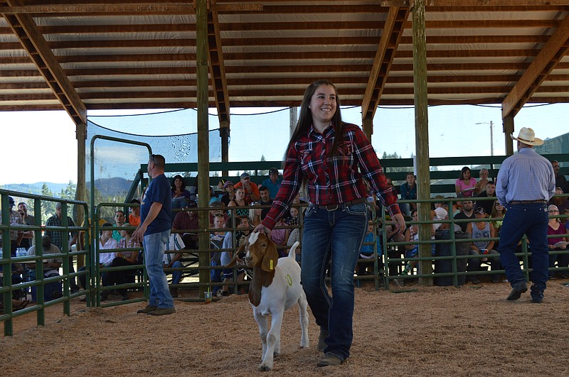 Ffa 4 h livestock auction july 29 hood river news ffa 4 h livestock auction july 29 thecheapjerseys Image collections