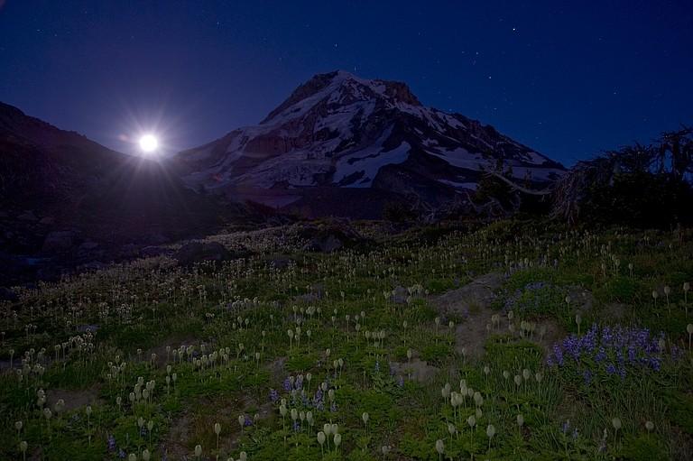 Buck moon illuminates a meadow on Mount Hood.