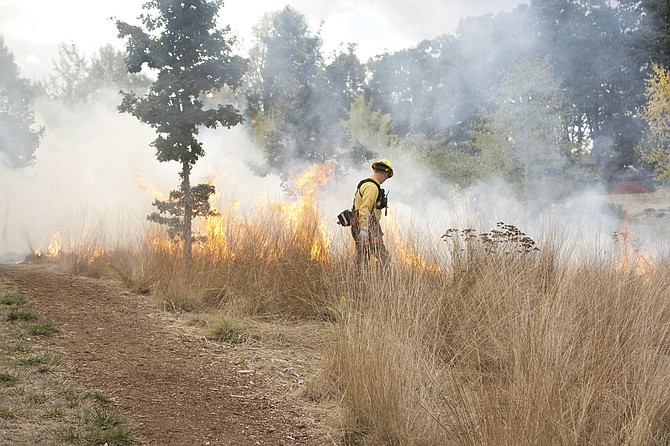 Dallas firefighters helped Delbert Hunter Arboretum volunteers use an ancient practice --fire -- to regenerate meadow grasses.