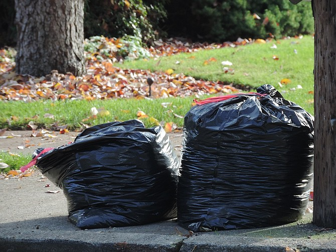 LEAVES must be bagged and the owner must empty them at the site, for the city's annual autumn leaf disposal service at public works. Note that this is for leaves only; see story for information on disposing of branches and other yard waste.