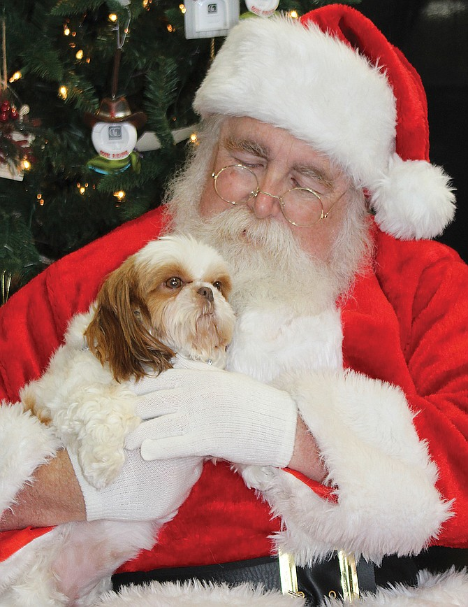 """Bitsy, a Shih Tzu owned by Nancy Arvidson of Sunnyside, has a photograph taken with """"Santa Paws"""" Fred Bray of Prosser during a fundraising event Saturday at Bleyhl's Country Store in Grandview."""