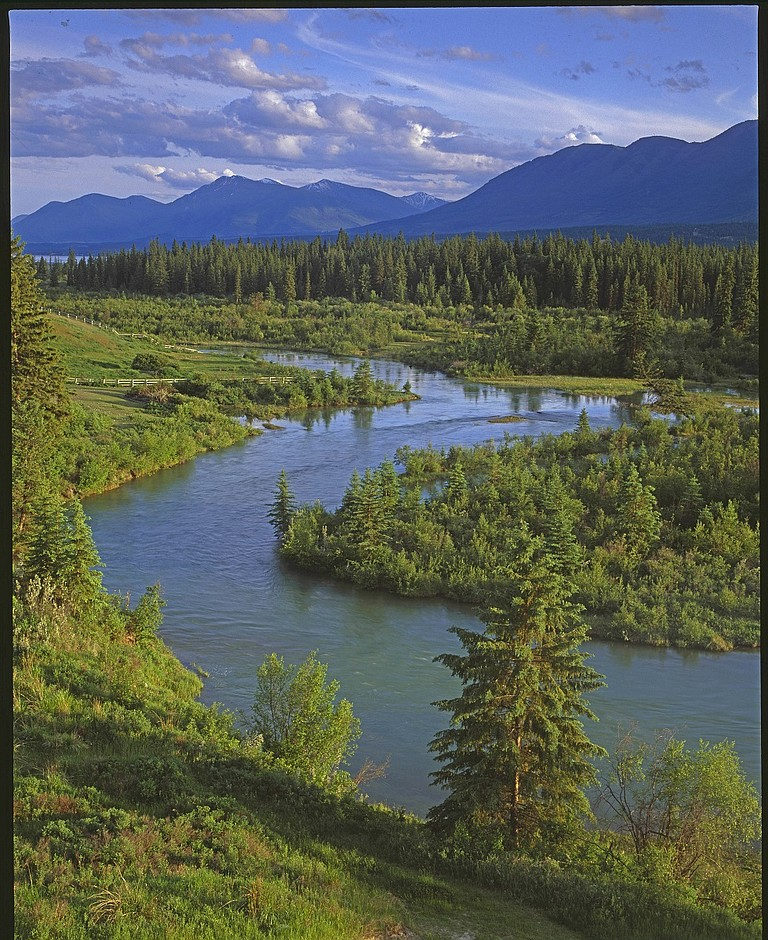 "COLUMBIA River, ""born free in the cradle of the Rocky Mountains in British Columbia."""