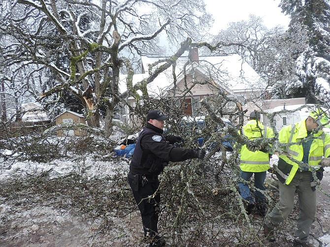 Rick Larson's oak tree split off a major portion last Thursday at 10:30 a.m., narrowly missing the corner of his home at 15th and Cascade.