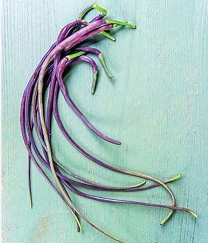 """Purple isn't just for decorating or clothes, you can enjoy it in your vegetables as well, such as this aerial radish called """"Dragon's Tail."""""""