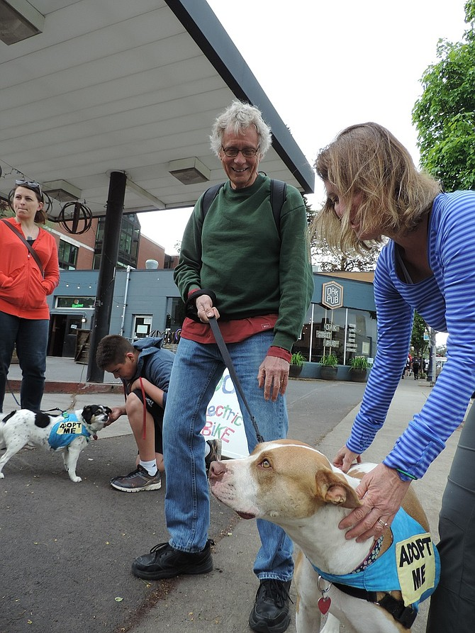 Mike Hendricks and other Hood River Adopt-A-Dog volunteers held a meet-and-greet on May 5 during First Friday, introducing prospective pet owners to dogs currently under the care of the shelter, located in Odell
