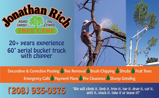 Jonathan Rich Tree Care