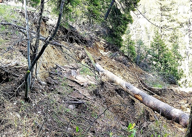 A landslide in Beehive Road is photographed here, causing forest officials to close the area.