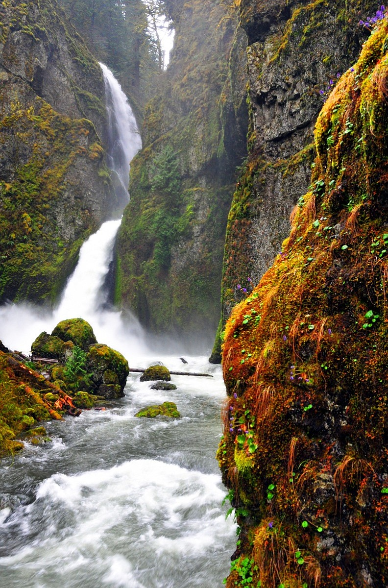 [Image: A8_waterfalls_oneonta_canyon_t800.jpg?90...9a8f88077d]