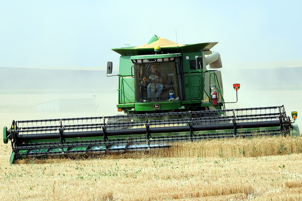 Despite smoke in the air and hazy skies, Mike Hauger was busy at work with harvest Sunday,  Aug. 5, just off U.S. Highway 95 in Grangeville, between Powerline and Zumalt roads.