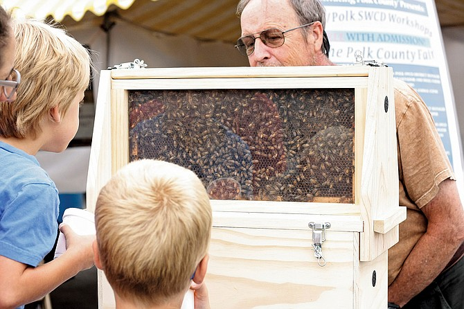 """Polk County Fair attendees check out a hive of George Woodward's bees on Saturday. Woodward gave an """"intro to beekeeping"""" presentation on Friday and Saturday."""