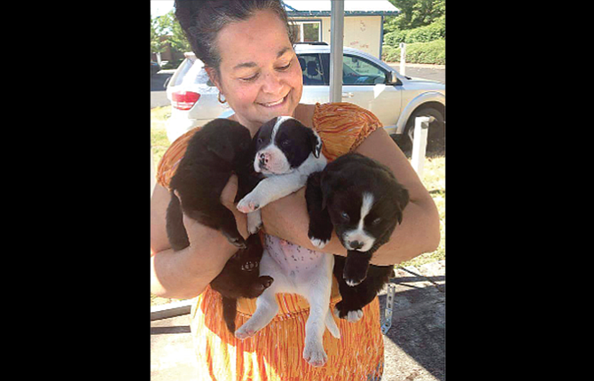 Dorothy Rodriguez Anderson is pictured with some puppies in this photo taken at her home in Vancouver. She now lives in Goldendale and comes to The Dalles to advocate for the homeless.