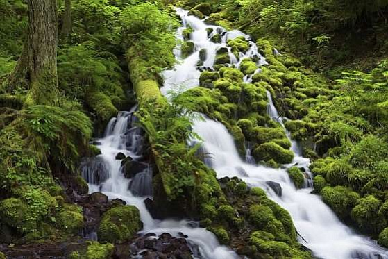 U.S. Forest Service provided this image to msn.com that makes it look like this Gorge waterfall and others like it are open and available, when they are not.