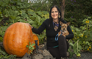 Karyn Hart planted two pumpkin plants in the garden she is restoring at Bent River and grew this massive pumpkin.