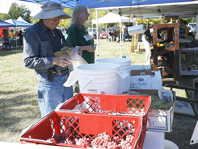 Stanley Church, left, puts a basket of table grapes in a bag for a customer at Polk County Bounty Market's last week of the season. Church has been selling grapes for three weeks.