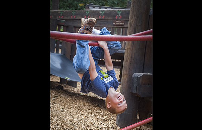 Camdon Cooper, 5, upends himself at Treetop Play Park at Sorosis Park Tuesday, where he and his brother Callin, 4, were taking advantage of cool dry fall weather to explore the many nooks and crannies of the park.