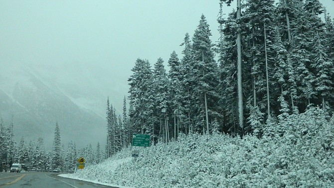 Snow blankets the trees beside Highway 20, the North Cascades Highway, at Washington Pass on Saturday, Oct. 7.