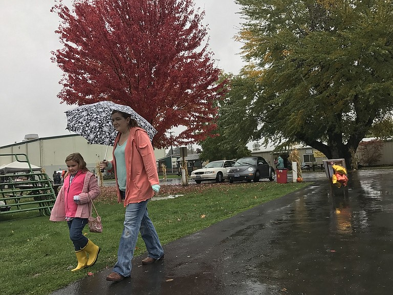 Heavy rainfall did not deter the hearty from the search for autumnal pleasures last weekend in the upper Hood River Valley. The annual Fruit and Craft Fair at Hood River Fairgrounds drew those in search of local fruit and Gorge-made crafts.