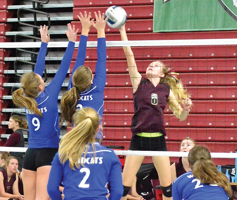 Madison Bosma spikes the ball for the Knights as Colton's Jordyn Moehrle (9) and Maggi Pluid attempt the block.