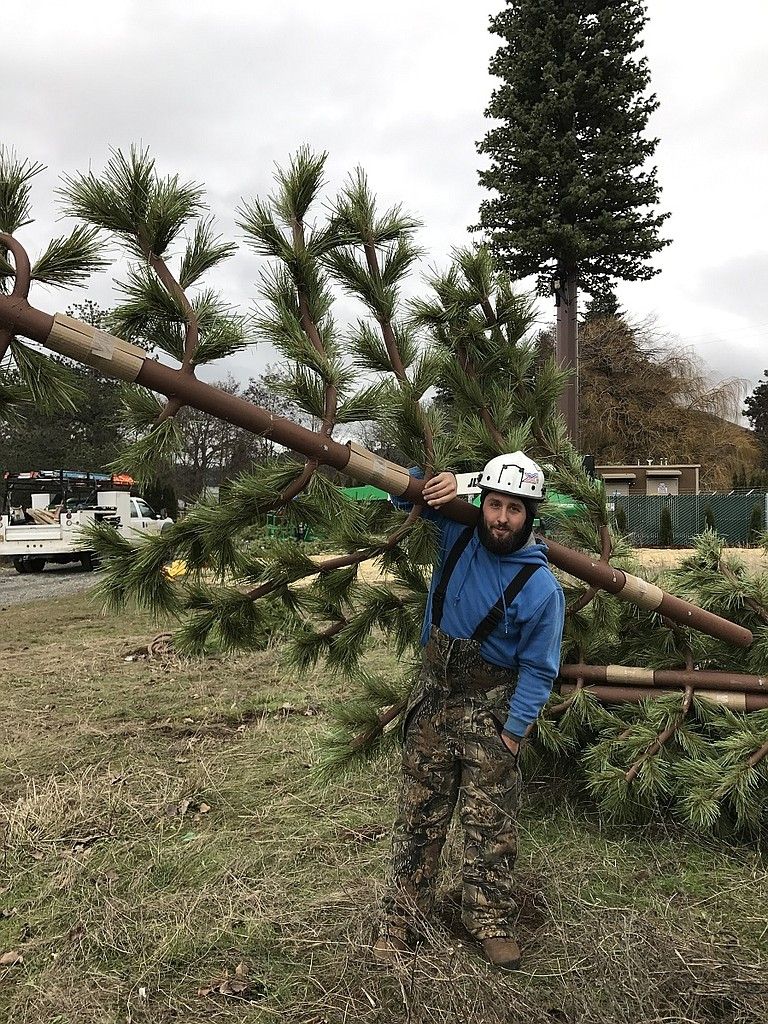 """John Fox of Summit Solutions pauses with a fake 11-foot tree branch, one of about 150 his crew bolted into the steel """"trunk"""" last week."""