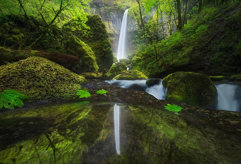 IDYLLIC view of Elowah Falls, in the west Gorge, by Matt Meisenheimer of Wisconsin, won the 2017 Friends of the Gorge Photo Contest. The falls, like most of the scenic wonders along the Historic Columbia Highway, remains closed to the public following the destructive Eagle Creek fire in fall 2017.