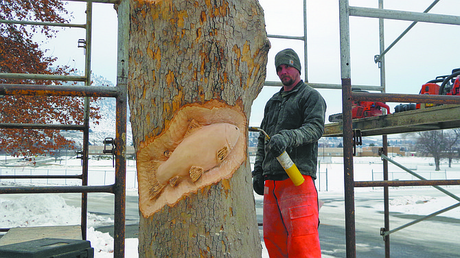 Chainsaw artist Jacob Lucas of Bonney Lake burns the fine details of a salmon on one of the two diseased London Planetrees included in the city's $10,000 tree carving project.