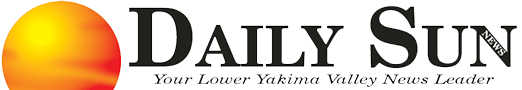 Daily Sun logo